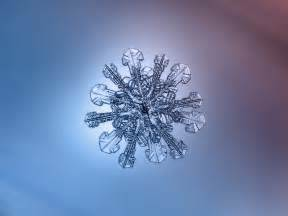 the most beautiful snowflake photos you ll ever see captured with a cheap diy camera extremetech