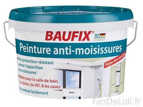 peinture anti moisissure peinture antirouille