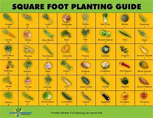Square Foot Planting Guide Garden Therapy