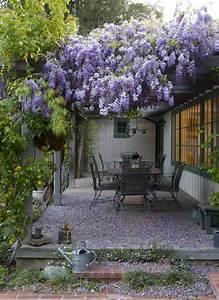 12 exemples damenagement jardin avec des glycines With amenagement terrasse et jardin 12 decoration escalier noel