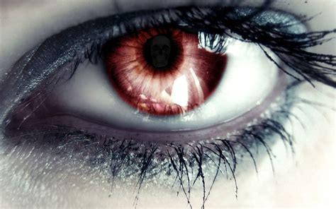 brown eye  skull reflection fond decran hd arriere
