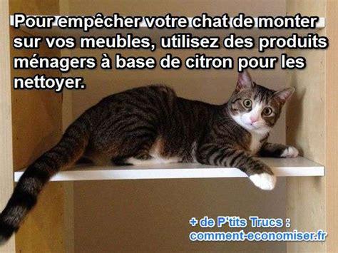 mon secret pour emp 234 cher mon chat de grimper sur les meubles