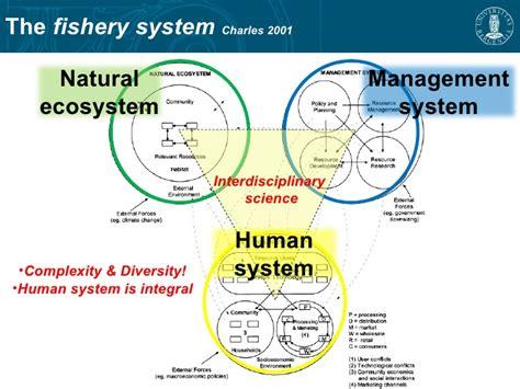 dorothys fisheries management dissertation