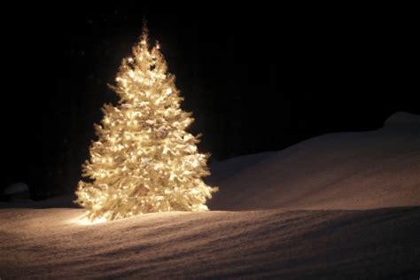 weihnachtsbräuche in deutschland weihnachtsbrauch und weihnachtsdekoration in deutschland
