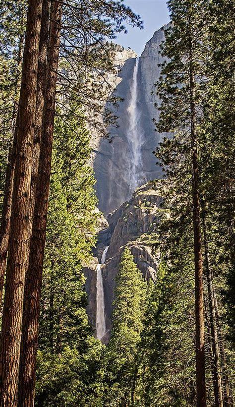Yosemite Falls California Amazing World
