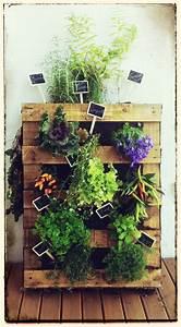 Mur Végétal En Palette : mur v g tal r alis avec une palette en bois herbes aromatiques et plantes vivaces tiquette ~ Melissatoandfro.com Idées de Décoration