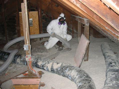 asbestos robert  steinberg mesothelioma options