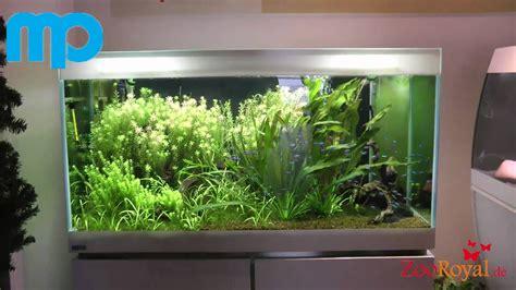 mp designer aquarium  youtube
