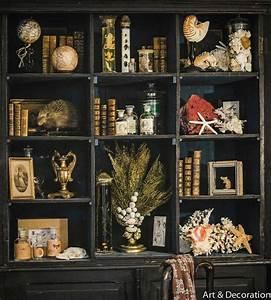 Le Cabinet De Curiosits Manouedith Et Ses Passions