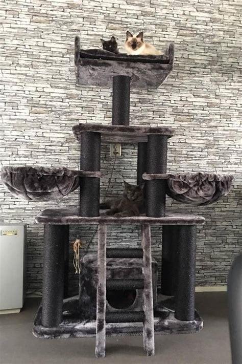 rhrquality kratzbaum black panther tierwebshop
