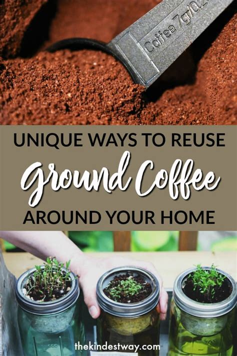 Overall, disposing of coffee grounds and cleaning the french press regularly can provide both practical and aesthetic benefits. Ingenious Ways to Recycle Coffee Grounds - The Kindest Way