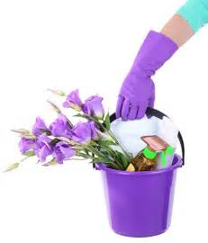 Spring Flowers Bucket Cleaning