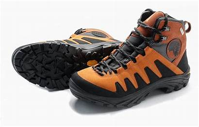 Hiking Shoe Guide Camping Active Gear Summer