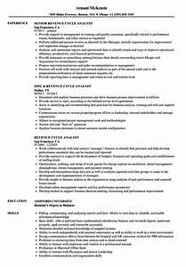 Resume Objective For Business Administration Revenue Cycle Analyst Resume Samples Velvet Jobs