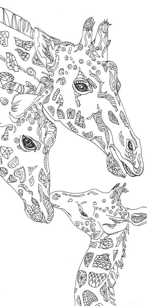 coloring pages giraffe printable adult coloring book clip