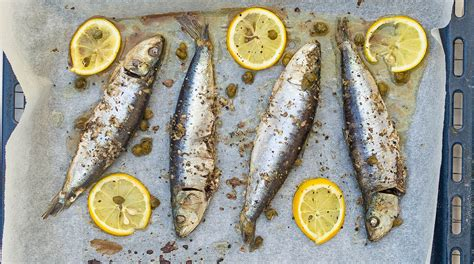 Recepten Griekse Keuken by De Griekse Keuken De Wereld Op Je Bord