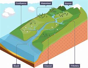 Key Features Of A River Include Tributaries  Channels And The Mouth
