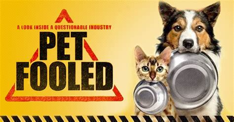 pet fooled  commercial pet food  making  pets sick