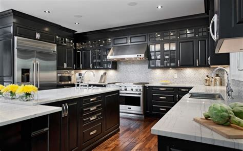 black kitchen cabinets with stainless steel appliances black cabinets and stainless steel appliances lanza av 9767