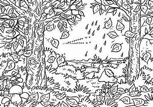rainforest coloring pages - autumn leaf in the forest coloring page netart