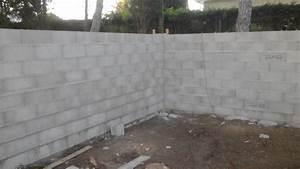 Prix D Un Parpaing 20x20x50 : prix d un mur en parpaing 0 mur de cl244ture en ~ Dailycaller-alerts.com Idées de Décoration