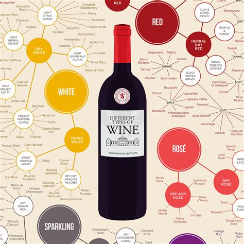 wine types common types of wine top varieties to know wine folly