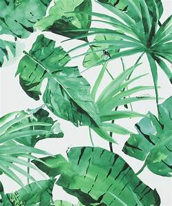 Banana Leaf Palm Tropical Wallpaper Brokers Melbourne