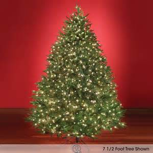 the world 39 s best prelit fraser fir 7 5 39 led artificial tree auctions buy and