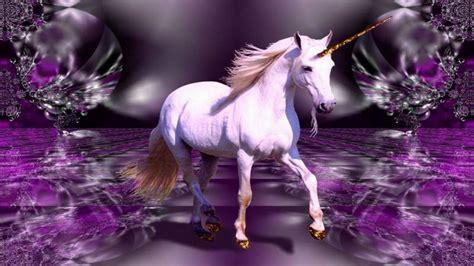 maserati ghibli white fantasy horse wallpaper