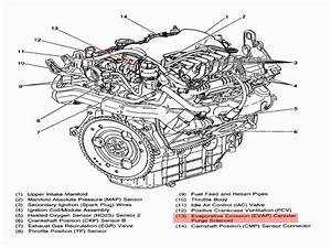 2000 Pontiac Grand Am Vacuum Diagram