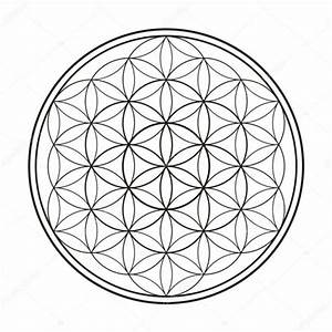 Mandala Flor De La Vida Tatuajes Diseos Dibujos Para