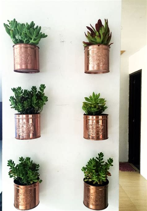 Wall Planters Best 25 Wall Planters Ideas On Pinterest