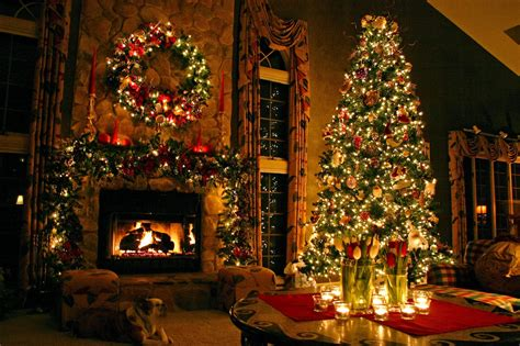 indoor tree decoration ideas tree