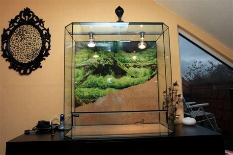 glasterrarium beleuchtung aussen reptilien terrarien tieranzeigen seite 5
