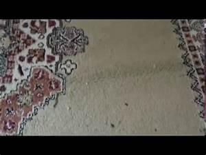Nettoyer Un Tapis En Profondeur : comment nettoyer un tapis youtube ~ Melissatoandfro.com Idées de Décoration
