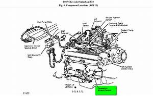 91 Accord Vacuum Diagram