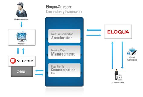 Sitecore Certified Developer Resume by Eloqua Lead And Caign Management Resume