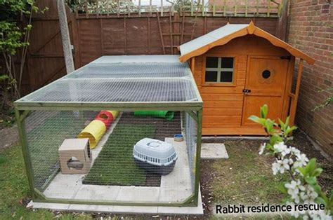 Creative Rabbit Hutches - ideal rabbit homes fantastic creative ideas best 4