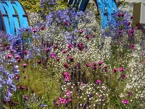 Arbuste Plein Soleil Longue Floraison : massif fleurs vivaces plein soleil ~ Premium-room.com Idées de Décoration