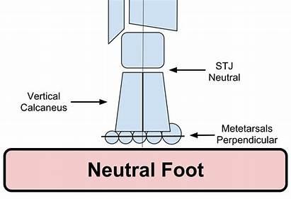 Foot Neutral Alignment Pathomechanics Posterior