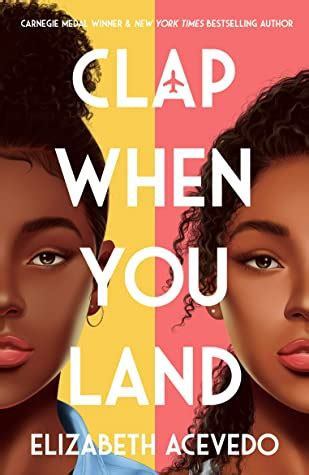 When Does Clap When You Land Come Out? 2020 Book Release ...