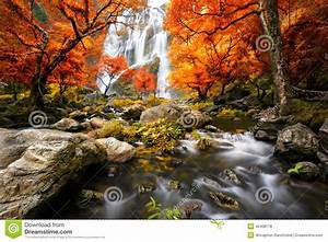 Waterfall in the autumn stock photo. Image of green ...
