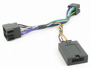 Into Car Wire Harness Connects2 Ctspg006