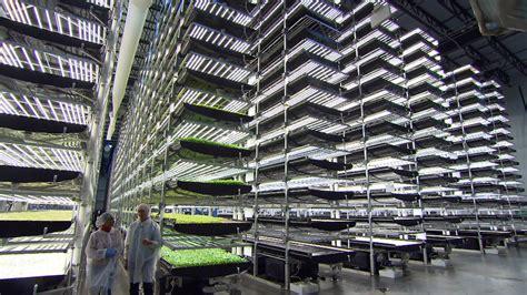 Vertical Farming - Agriponics Vertical Farming