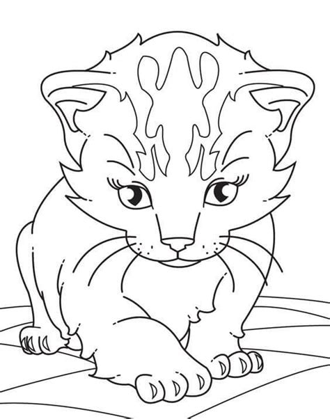 printable kitten coloring pages kitty coloring