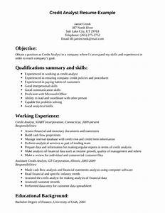 entry level nurse resume template entry level mechanic resume