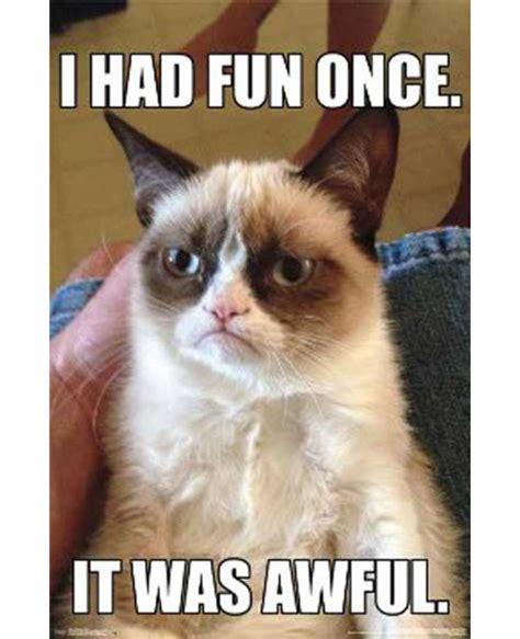 Grumpy Cat Meme I Had Fun Once - grumpy cat i had fun once it was awful poster
