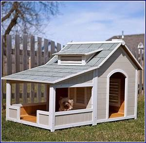 Dog houses for multiple dogs extra large dog houses two for Large dog house for multiple dogs