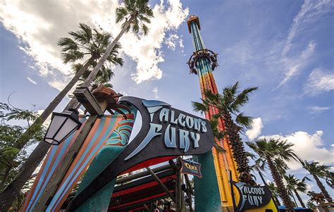falcon s fury open at busch gardens ta theme park