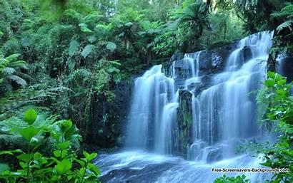 Screensavers Waterfall Wallpapers Nature Personal Baltana Resolution